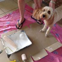 Banksia Park Puppies painting