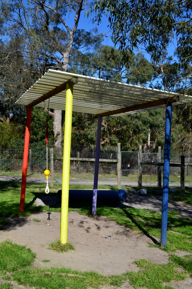 Puppy playgrounds at Banksia Park Puppies