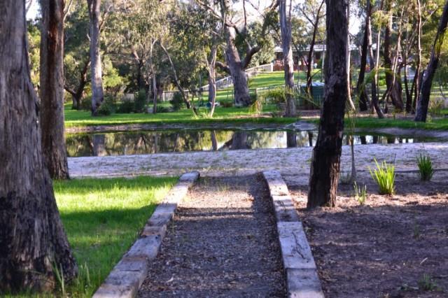 Banksia Park Puppies park