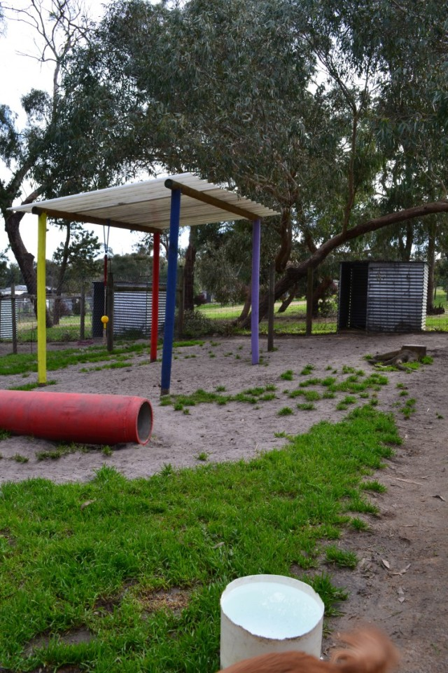 Banksia Park Puppy Playgrounds