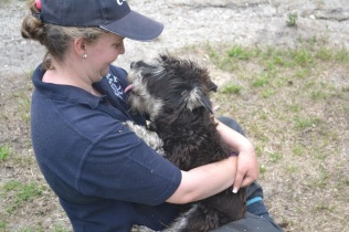 Snazzi having a cuddle with one of our socialisation staff Ash