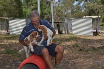 Banksia Park Puppies Tricky and Tia