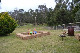 Banksia Park Puppies party