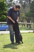 banksia-park-puppies-pruefull-26-of-36