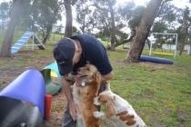 banksia-park-puppies-oopski-17-of-21