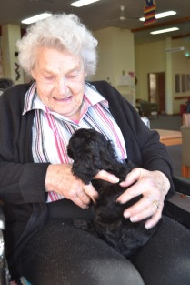 Banksia Park Puppies Ashleigh house