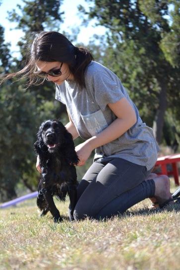Banksia Park Puppies Jodel - 1 of 27 (16)