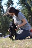 Banksia Park Puppies Jodel - 1 of 27 (21)