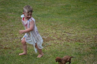 banksia-park-puppies-slip-and-slide-14