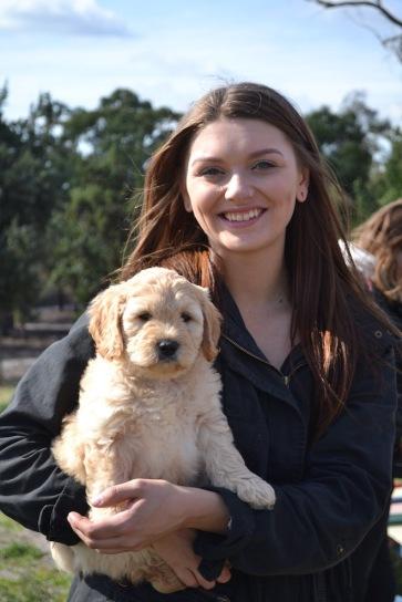 Banksia Park Puppies Animal Studies - 1 of 30 (24)