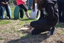 Banksia Park Puppies Animal Studies - 1 of 30 (29)