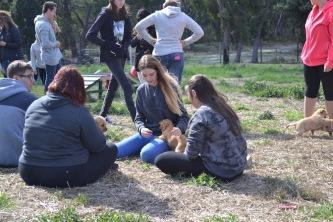 Banksia Park Puppies Animal Studies - 1 of 30 (6)