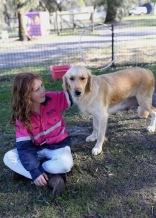 IVY - banskia park puppies - 1 of 50 (17)